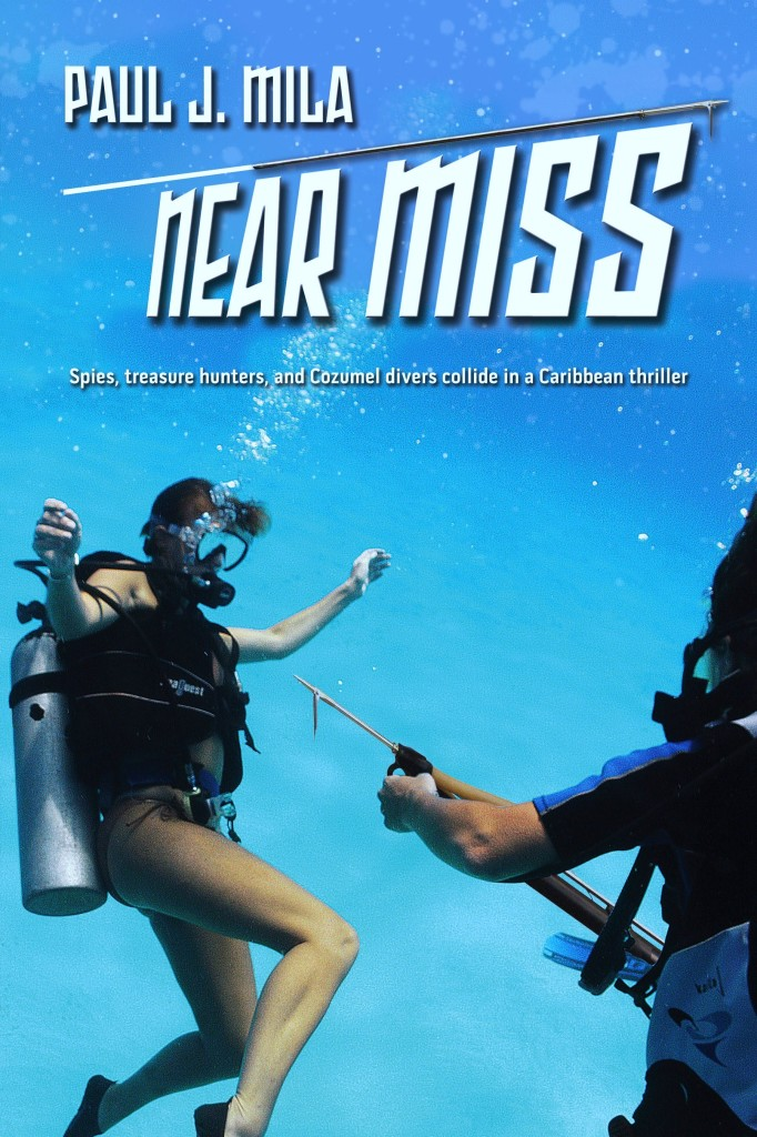 Near Miss Book Cover