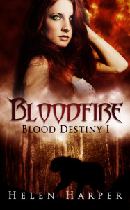 Bloodfire Cover