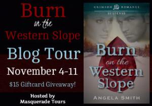Burn on the Western Slope Banner